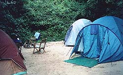 A typical Cape Vidal camp site